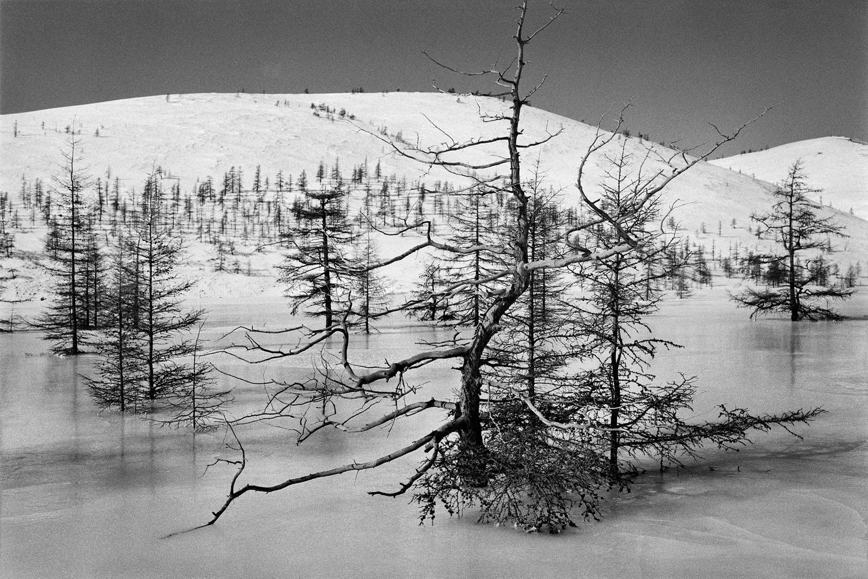 Seguindo os passos de Varlám Chalámov: O vale congelado do rio Miakit (Foto: Emil Gataullin)