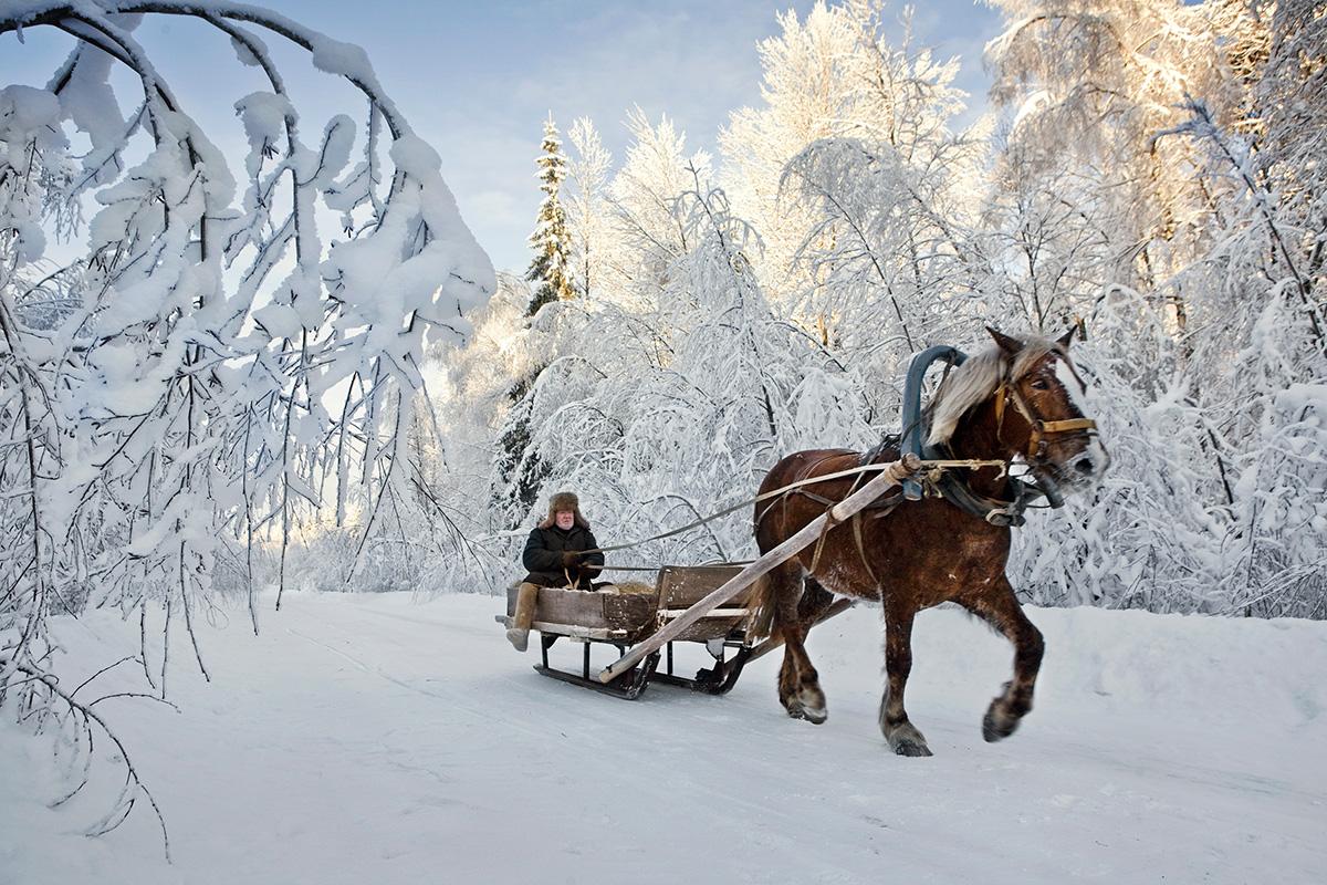 Upokojenec Viktor Matvjejev se s konjem pelje do najbližjega mesta. Zaradi snežnih zametov jim hrane niso dotavili že dva tedna. Fotografija: Frank Herfort