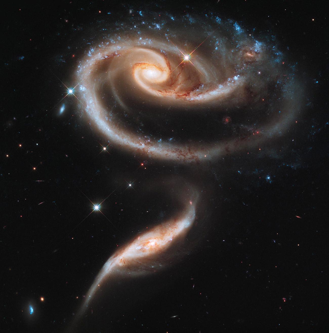 Berbentuk seperti mawar, UGC1810 dan UGC 1813 / NASA, ESA