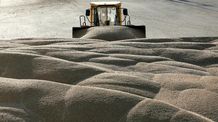 Traktor auf der Trocknungsanlage für Getreide im Dorf Talniki, Krasnojarsk, Sibirien