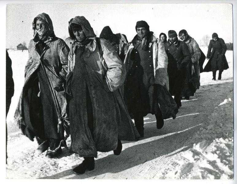 Северозападния фронт, 1944 г.
