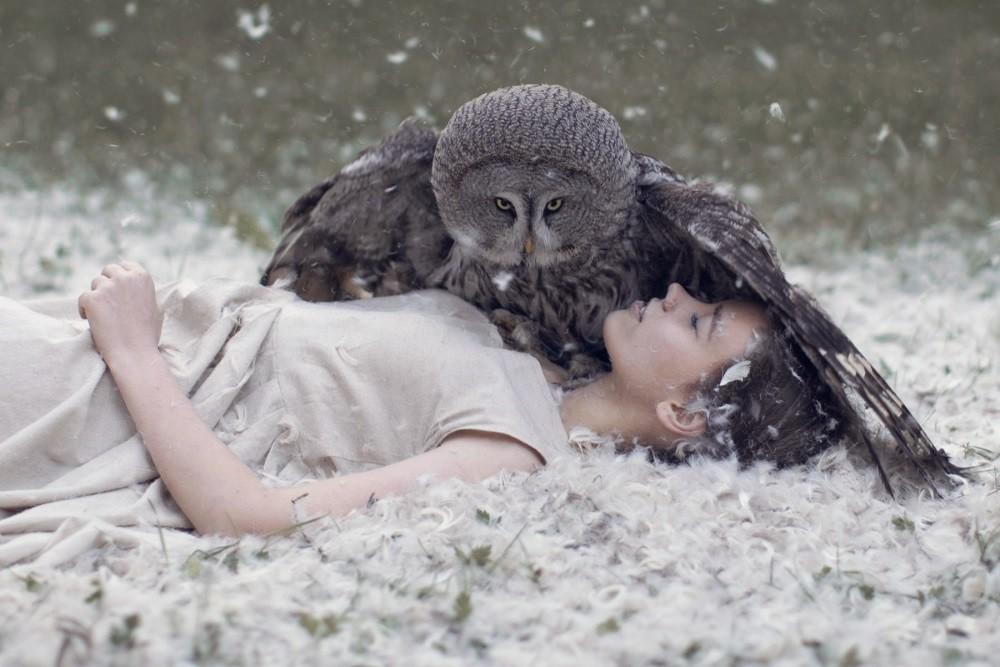 Птицата, която създаде света, срещу птицата, която води до края на света