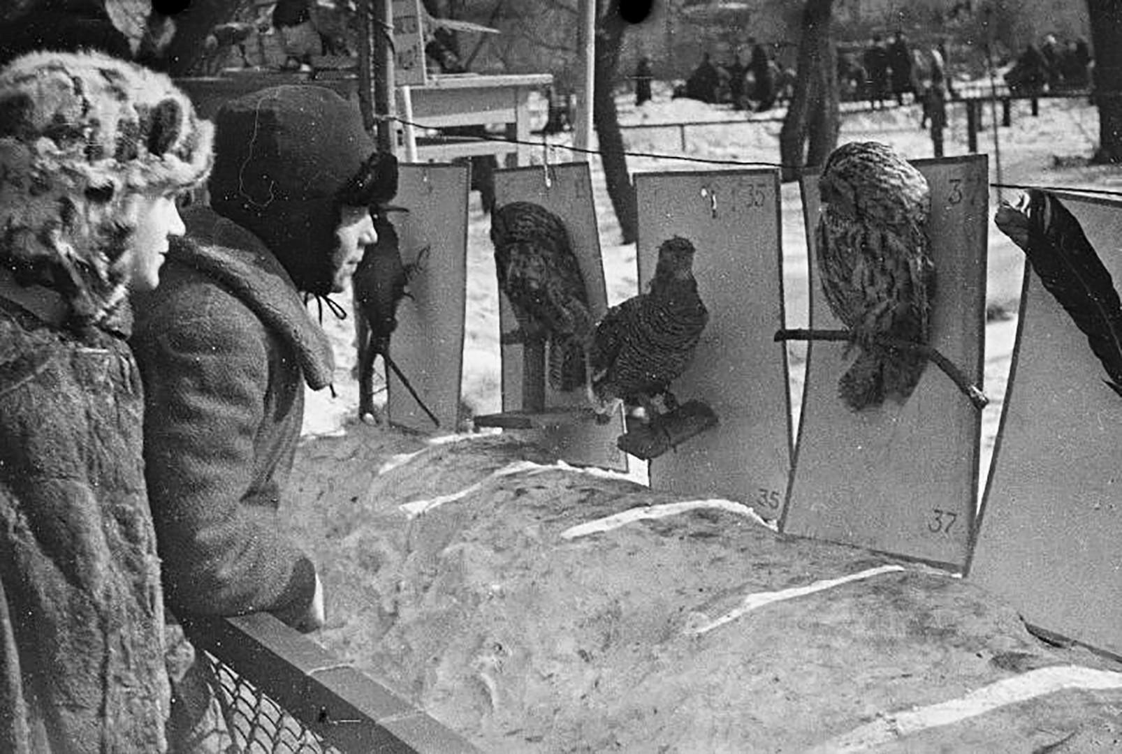 В зоопарка 1938 г.