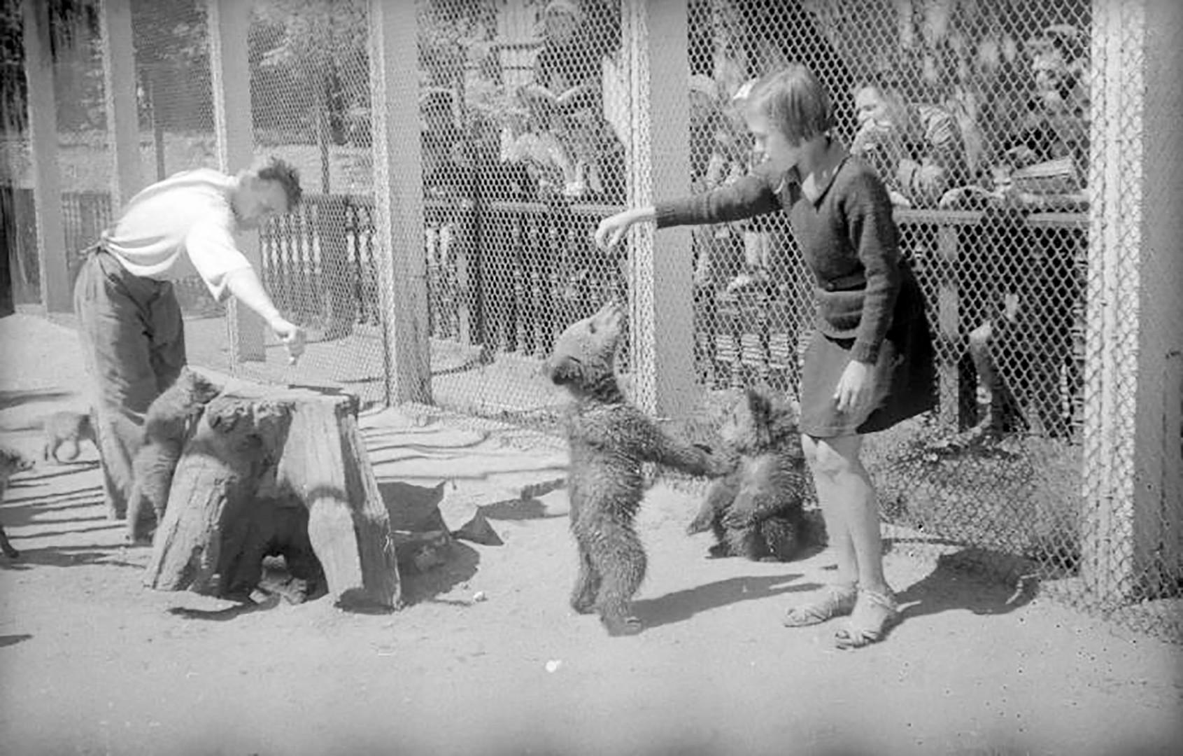 В зоопарка 1943 г.