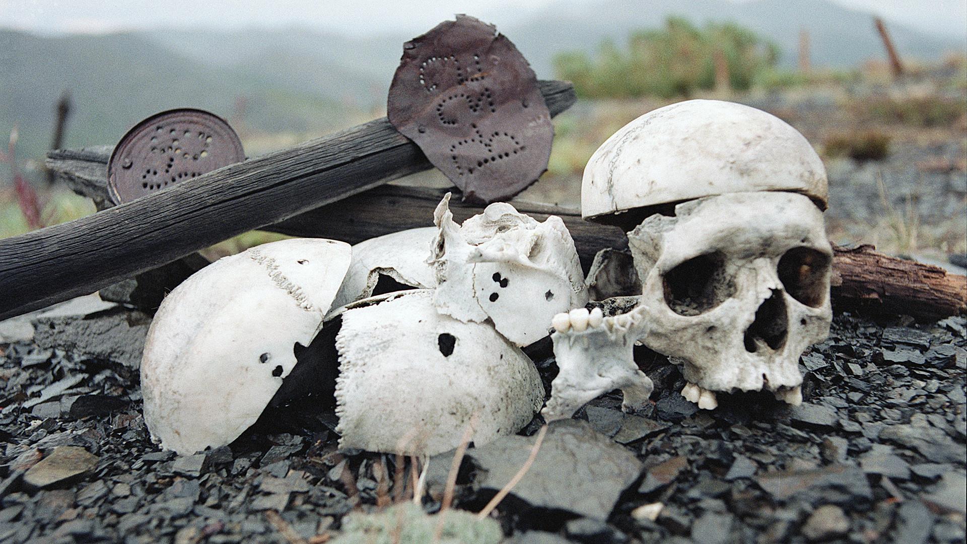 Kosti mučenih obsojencev v koncentracijskem taborišču Butugičag v Kolimi.