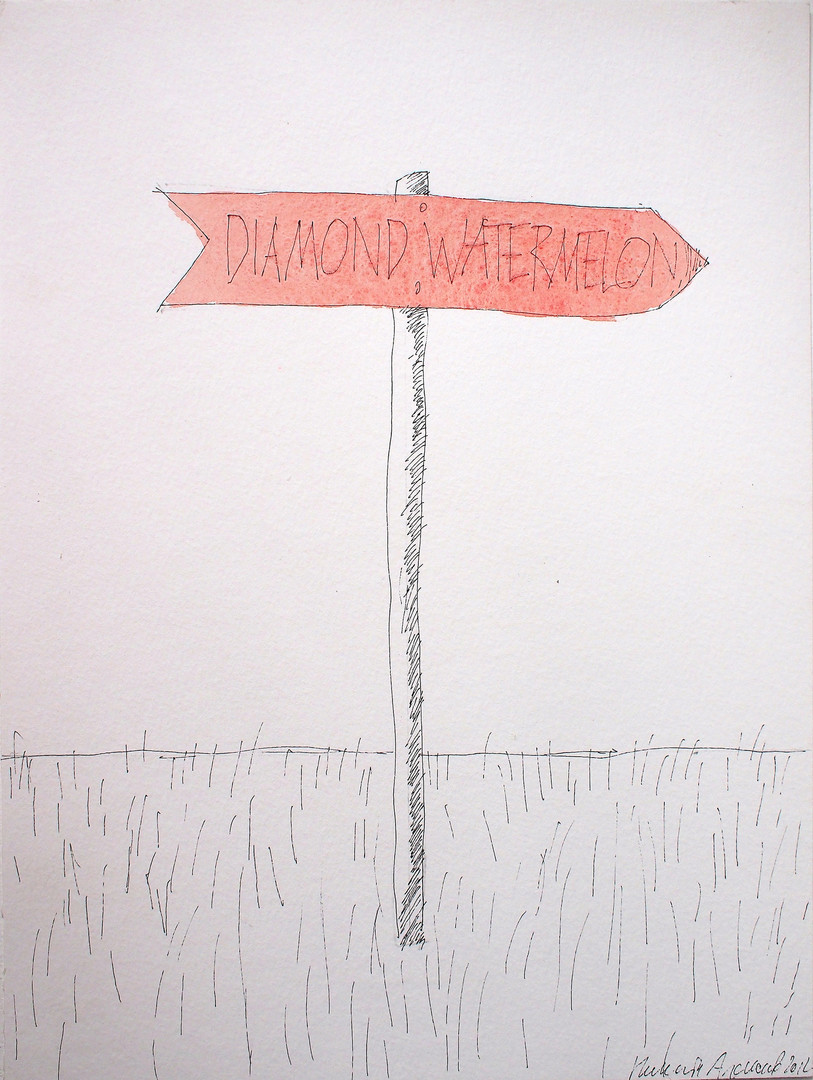 "Nikita Alekseev, ""Diamond, watermelon"", dalla serie ""Directions"""