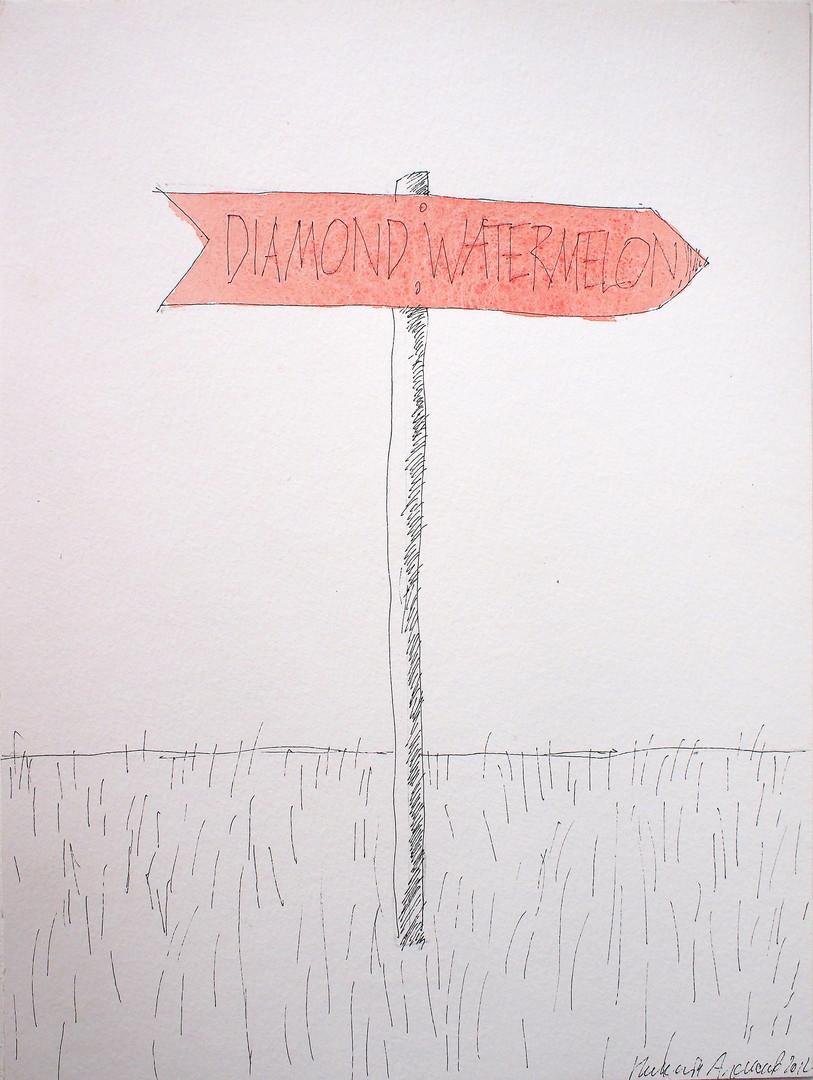 Nikita Alexeev. Diamond, watermelon. From the series Directions.