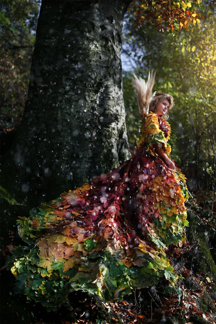 """""""Долази јесен"""""""