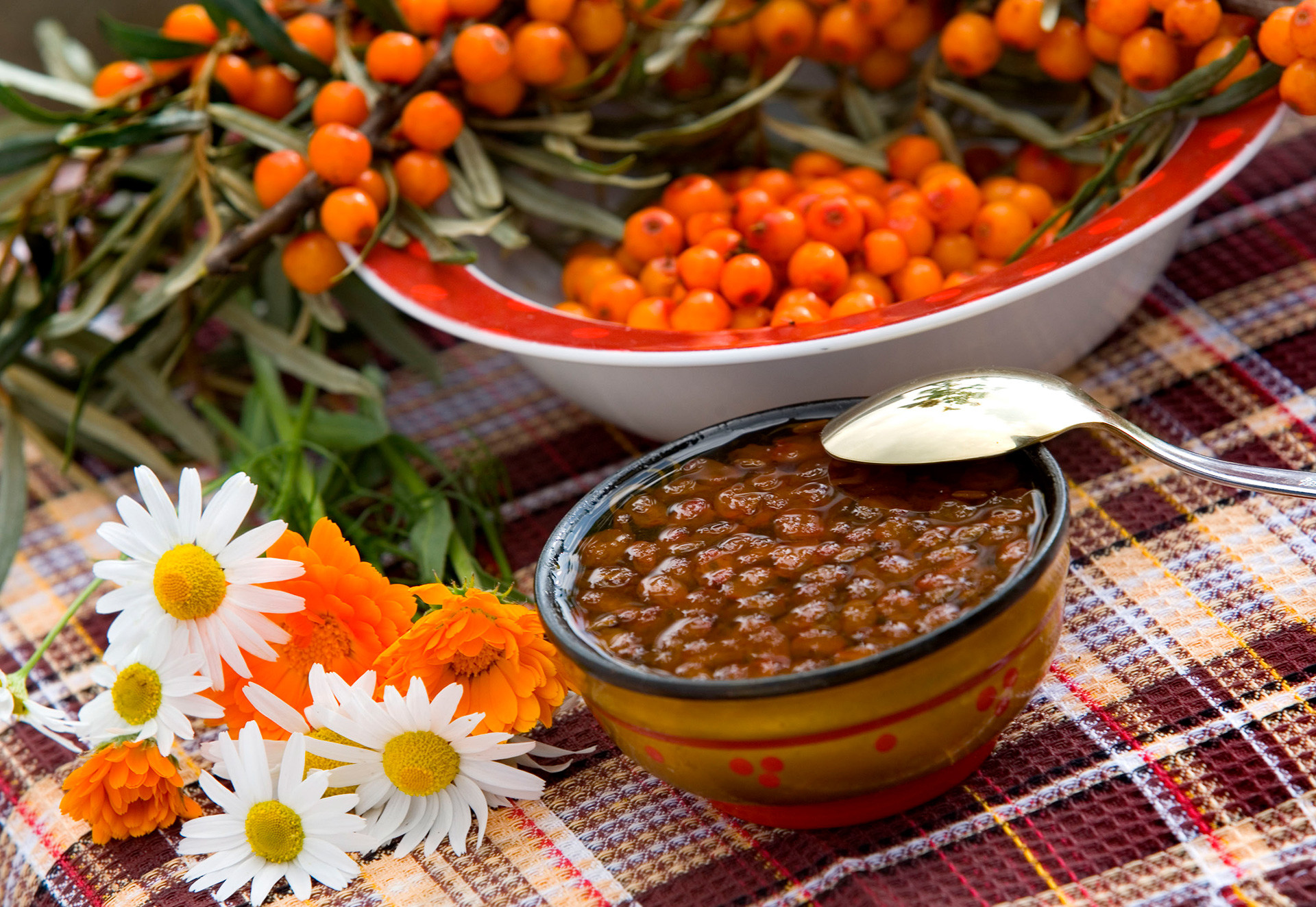 Sea buckthorn grows almost everywhere in Russia.
