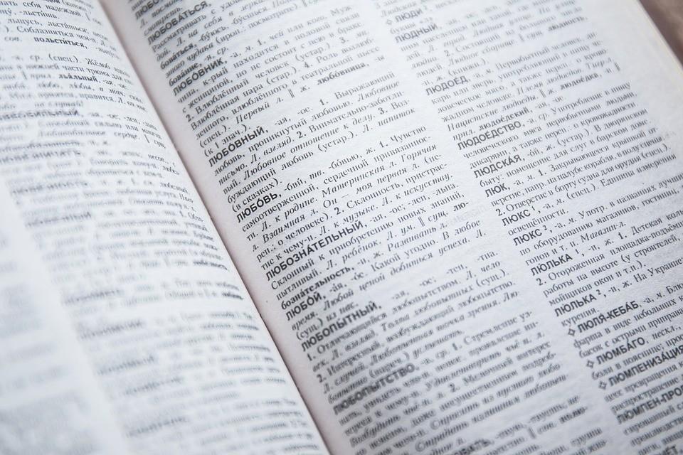 V 17. stoletju je bila slovenščina v ruskem slovarju označena za vendski jezik. V preteklosti so ji Rusi pravili tudi korotanščina in slovinščina.