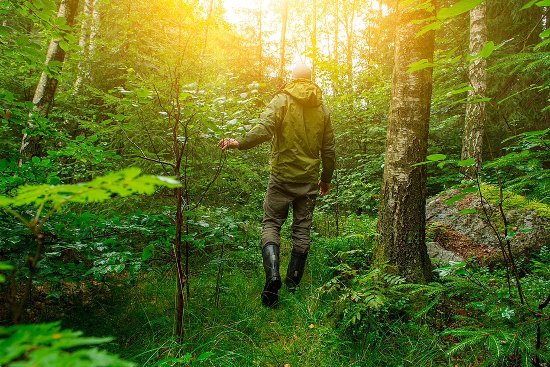 A man walking through thick forest