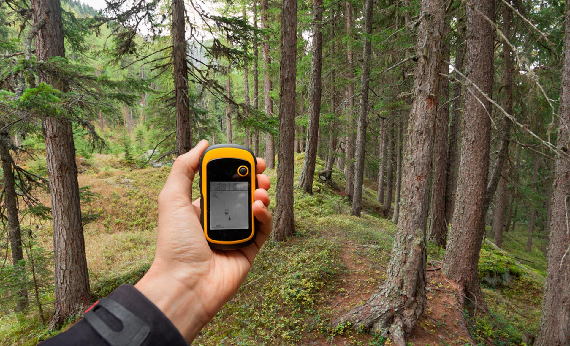 Pronalaženje pravog položaja u šumi pomoću GPS-a.