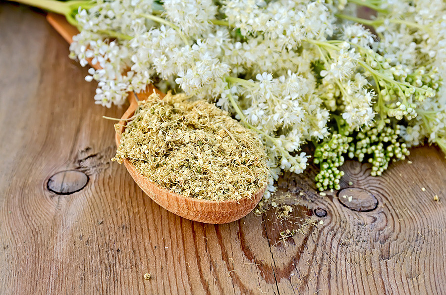 Dried flowers of meadowsweet.