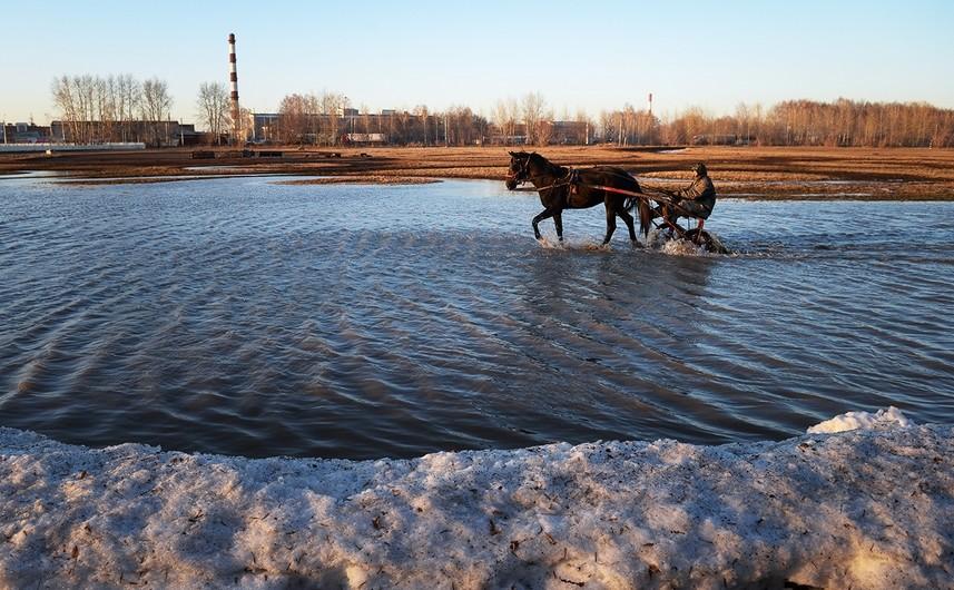 Novosibirski hipodrom