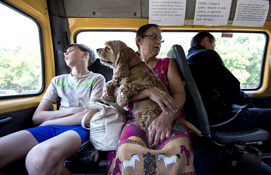 Passengers of marshrutka in Omsk