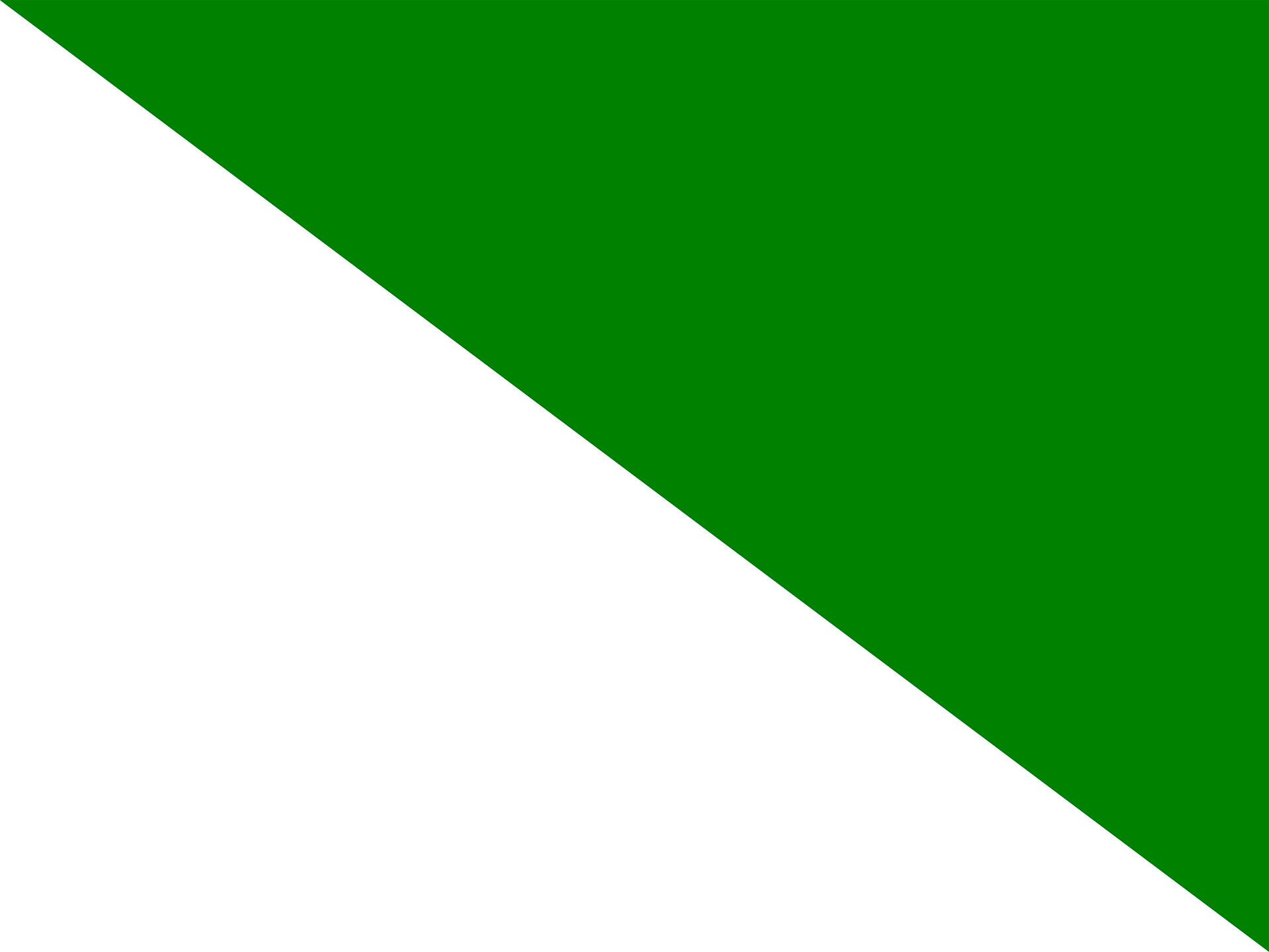 Bandera del regionalismo siberiano.