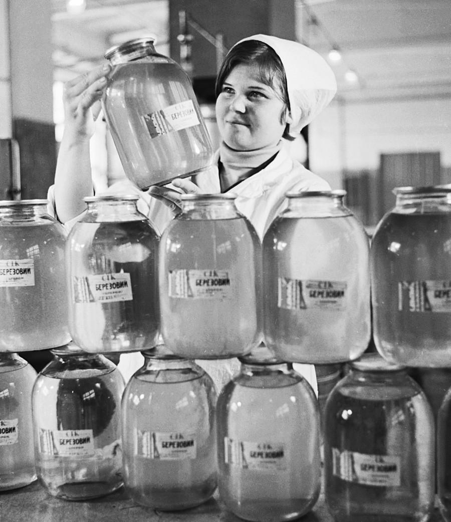 """""""Beriôzovi sok"""", ou suco de bétula, é feito com a seiva da árvore de bétula."""