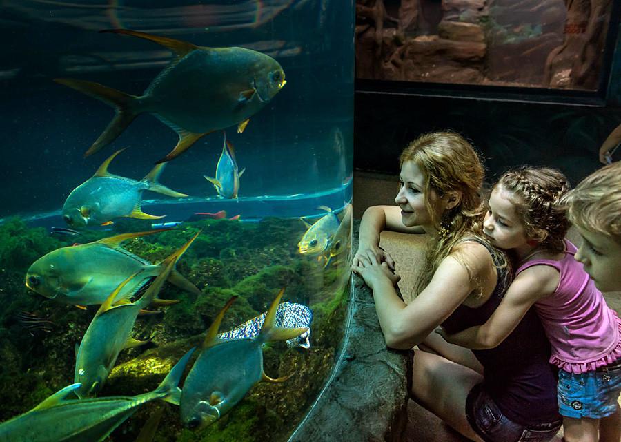 Crianças se divertem no Oceanário de Moscou.