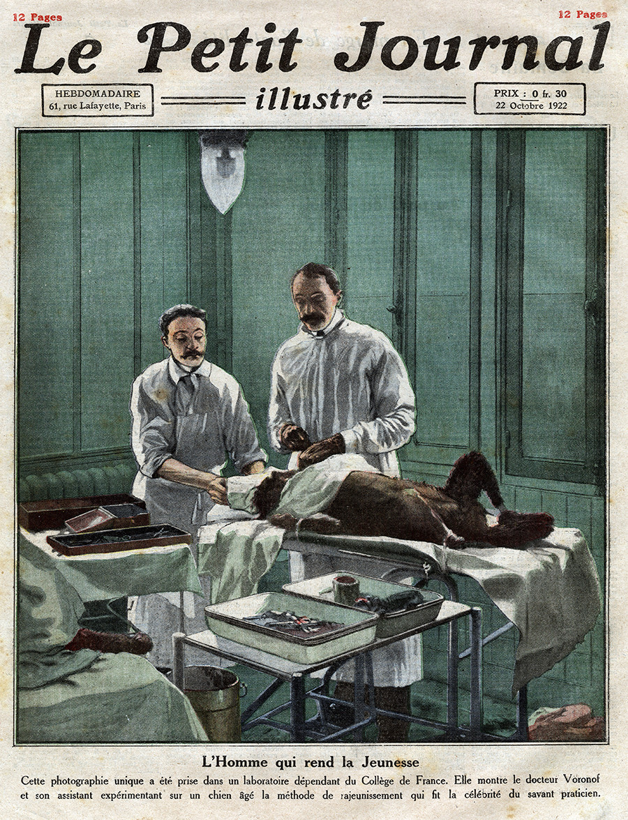 French surgeon of Russian extraction Serge Abrahamovitch Voronoff (1866-1951) and his assistant operating on an old dog, according to his method of rejuvenation by grafting, in a laboratory at the College de France, Frontpage of French newspaper Le Petit Journal Illustre, October 22, 1922.