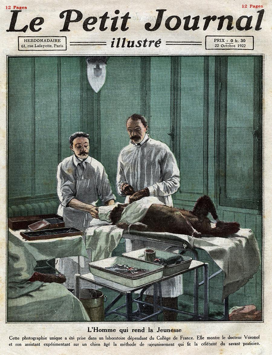 """Serguêi Vôronov (1866-1951) e seu assistente operam um cão usando seu método de rejuvenescimento por transplante de testículos em um laboratório na França. Capa do jornal francês """"Le Petit Journal Illustre"""", de 22 de outubro de 1922."""