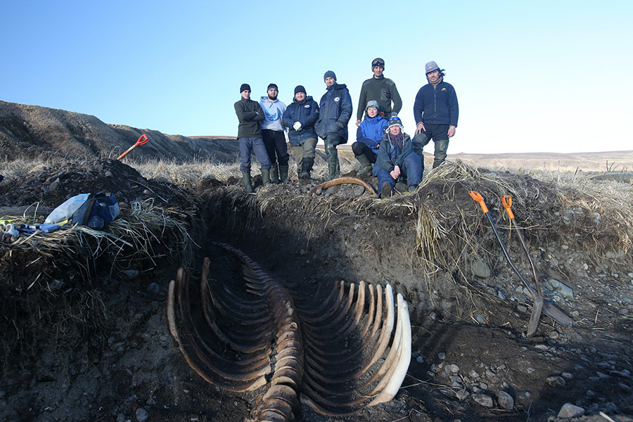 Researchers of the Komandorsky Nature Reserve