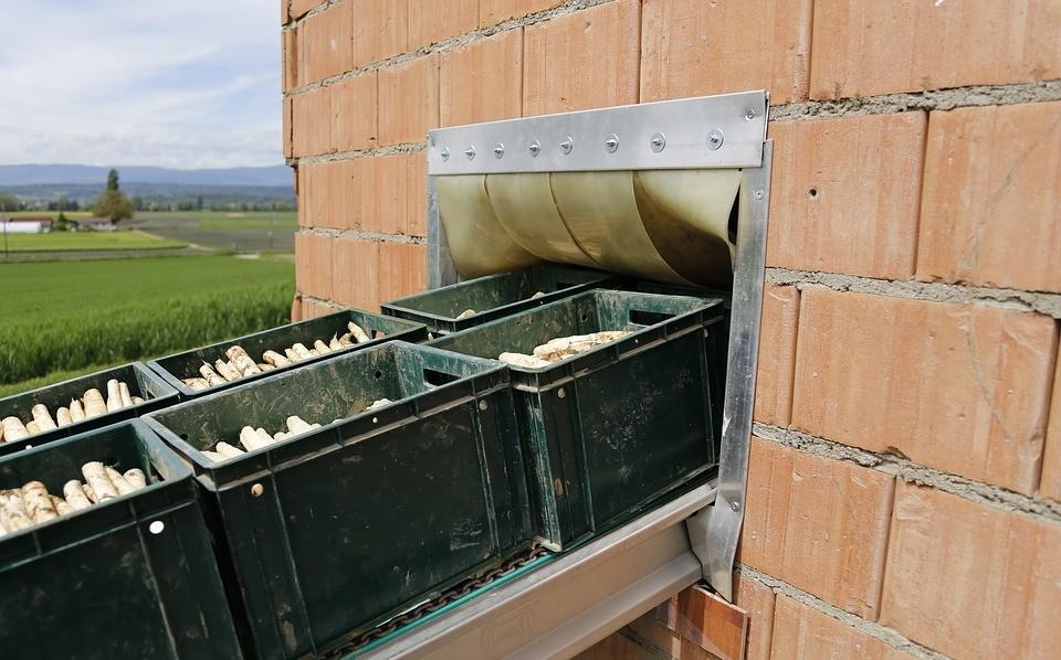 Slovenija iz Novosibirske regije uvaža zlasti prehrambne izdelke in olja.