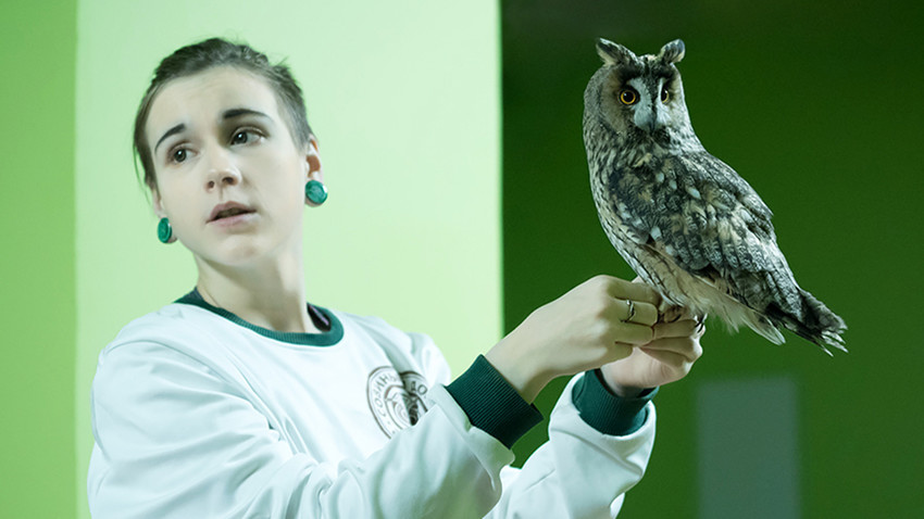 Anna Potapova with Morty, long-eared owl.