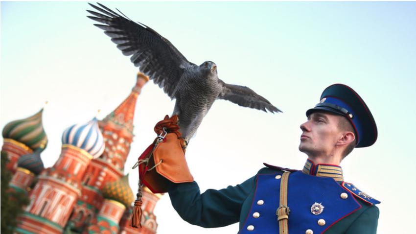 Pripadnik Kremeljske ornitološke službe na zaključni proslavi Mednarodnega vojaškega glasbenega festival na Rdečem trgu.