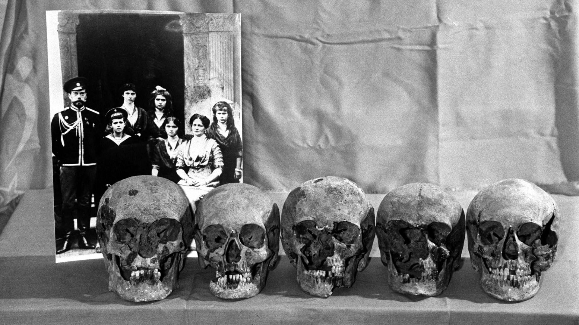 「皇帝一家の」頭蓋骨と推定されるもの。1993年