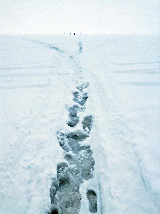 Само неколку вљубеници во зимскиот риболов што личеа на пингвини се гледаа на хоризонтот.