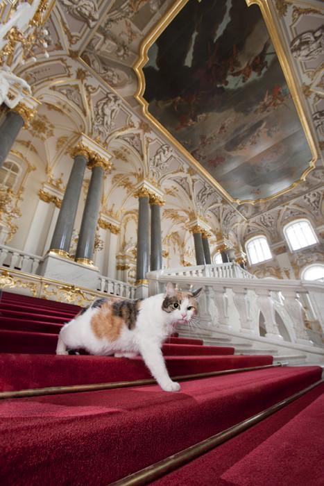 Francesca auf der Jordan-Treppe: Sie ist stolz auf ihren Namen und unterhält ihre