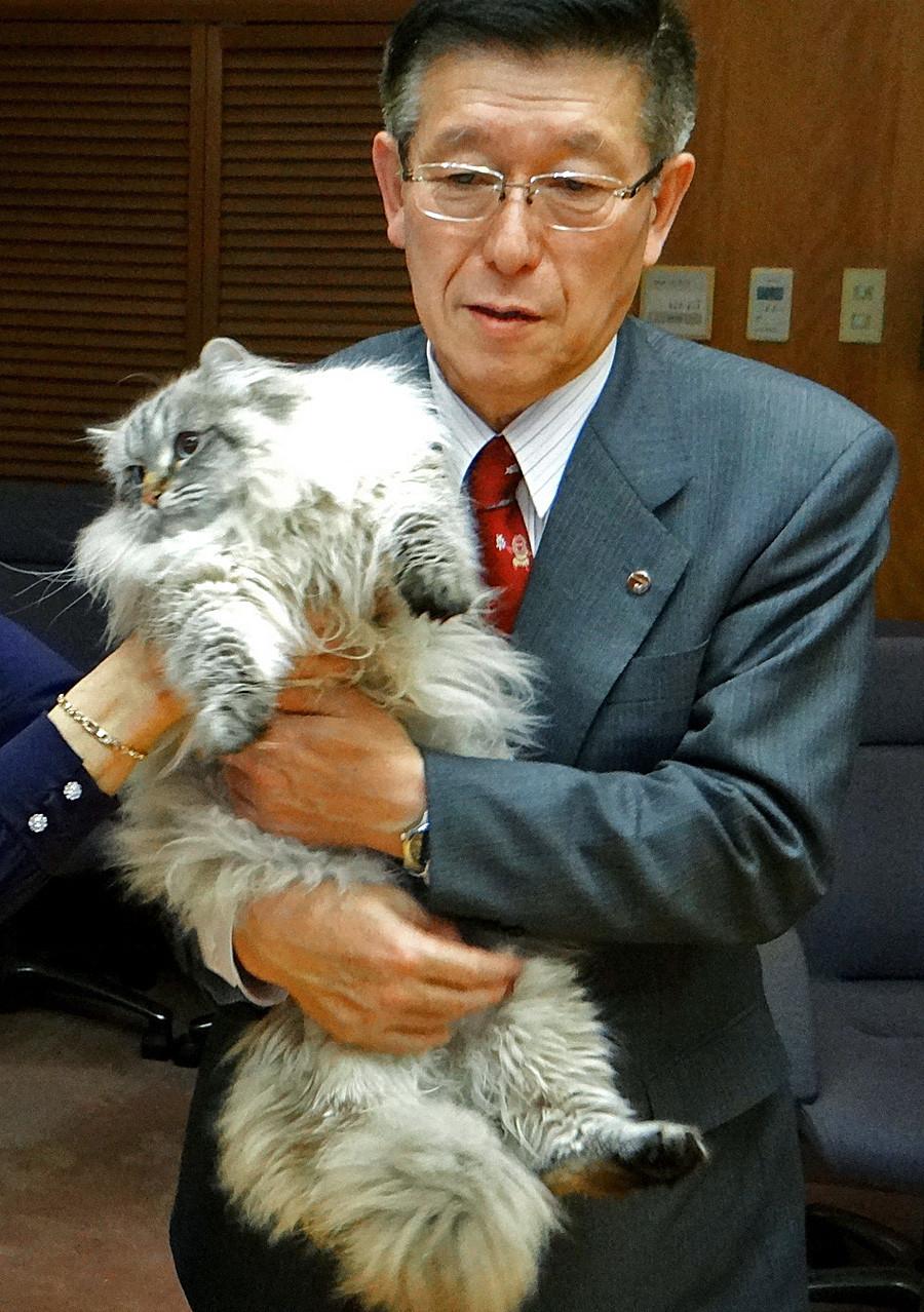 Gubernur Prefektur Akita Norihisa Satake merangkul kucing Siberia bernama Mir yang dihadiahkan untuknya dari Presiden Rusia Vladimir Putin.