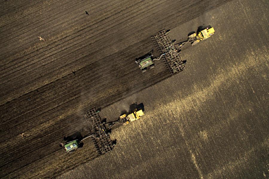 Mesin-mesin pertanian menabur serealia (tanaman rumput-rumputan yang bijinya digunakan sebagai makanan manusia, seperti padi dan gandum) di Oblast Novosibirskaya.