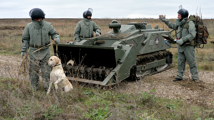 Mine clearance specialists of the engineering corps, with a dog trained to detect mines, near the remote-controlled Uran-6 robotic system during the removal of explosive objects from the agricultural land.