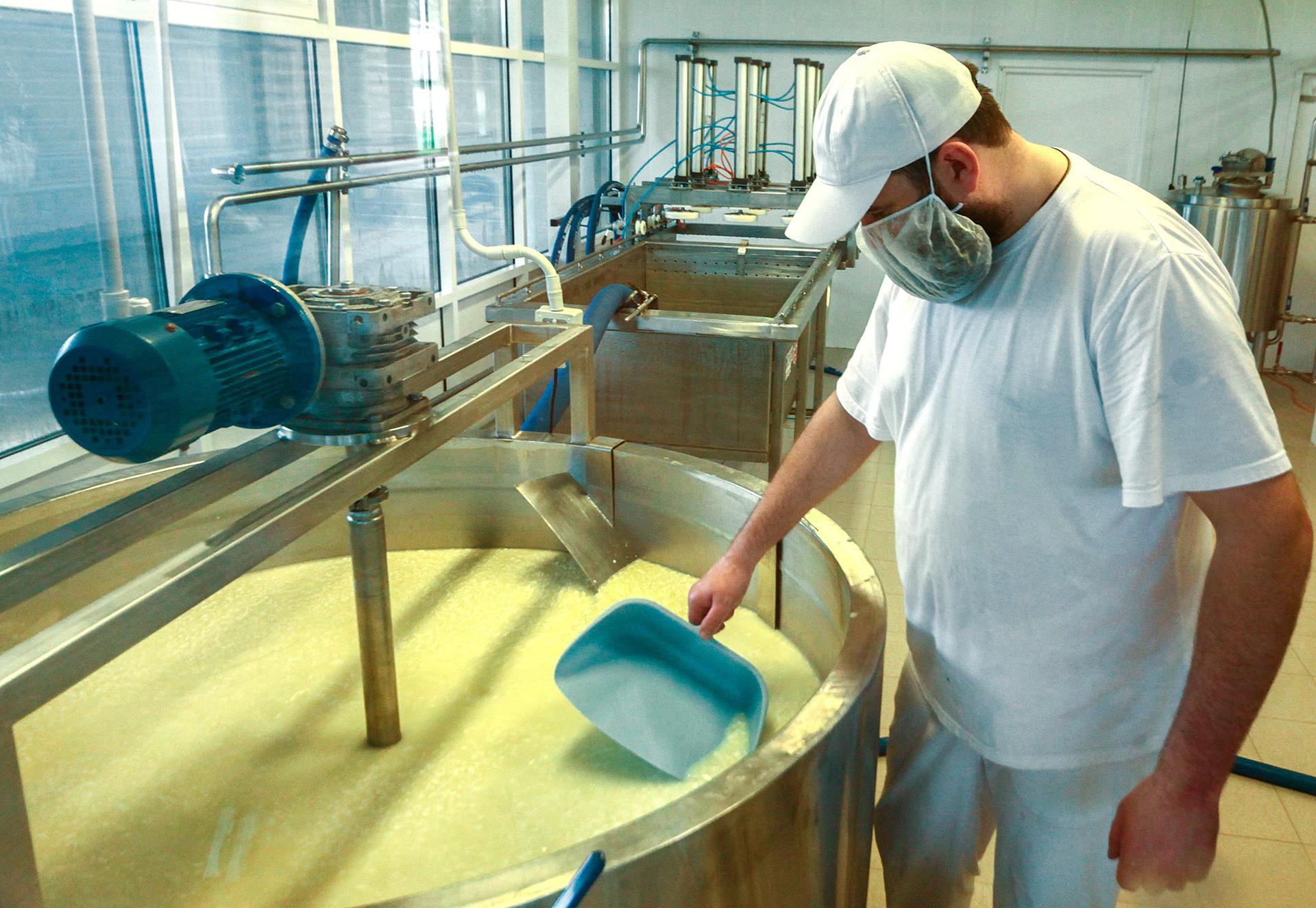 「ロシアのパルミジャーノ」チーズ工場、イストラ市、モスクワ州