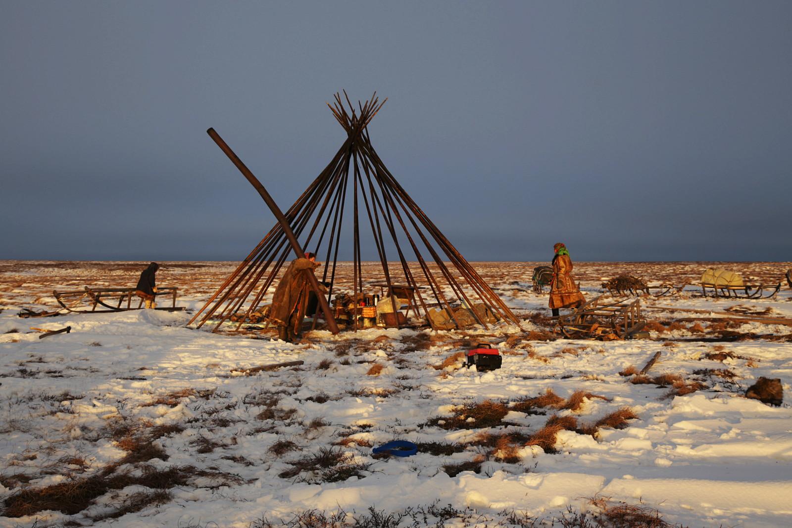 Pembongkaran chum, rumah tradisional suku Nenet.