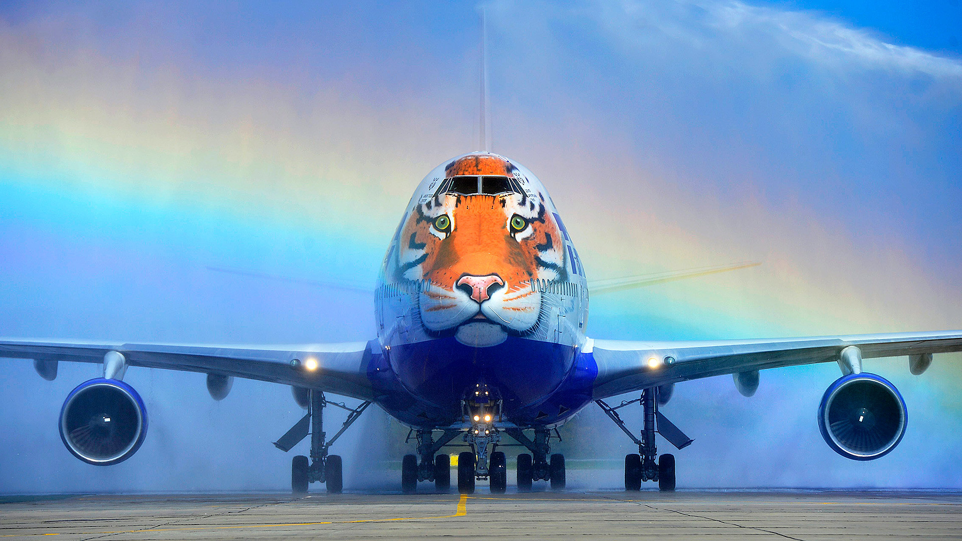 "The 'tiger' plane is known as the ""Striped flight."""