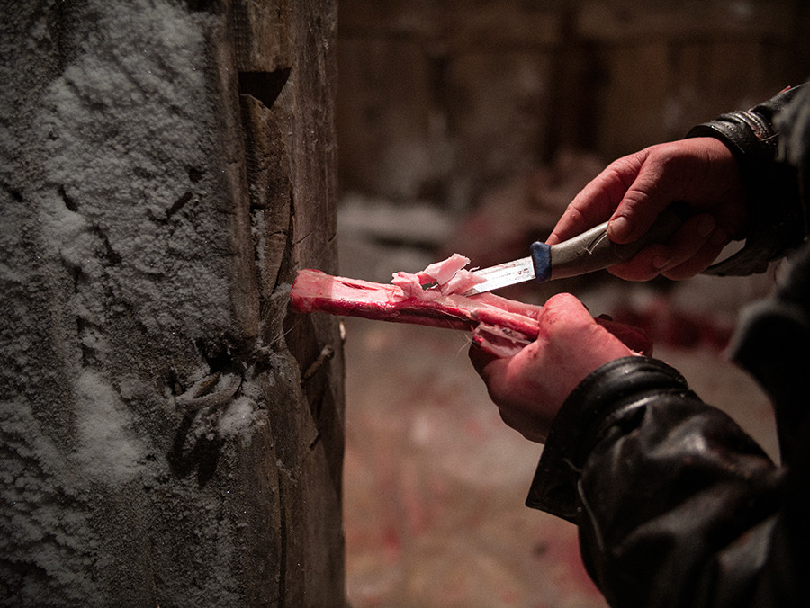Frozen bone marrow is a prized delicatessen in the tundra