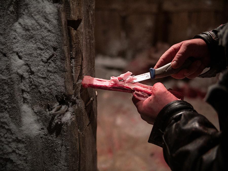 La médula ósea congelada es una delicatessen preciada en la tundra.