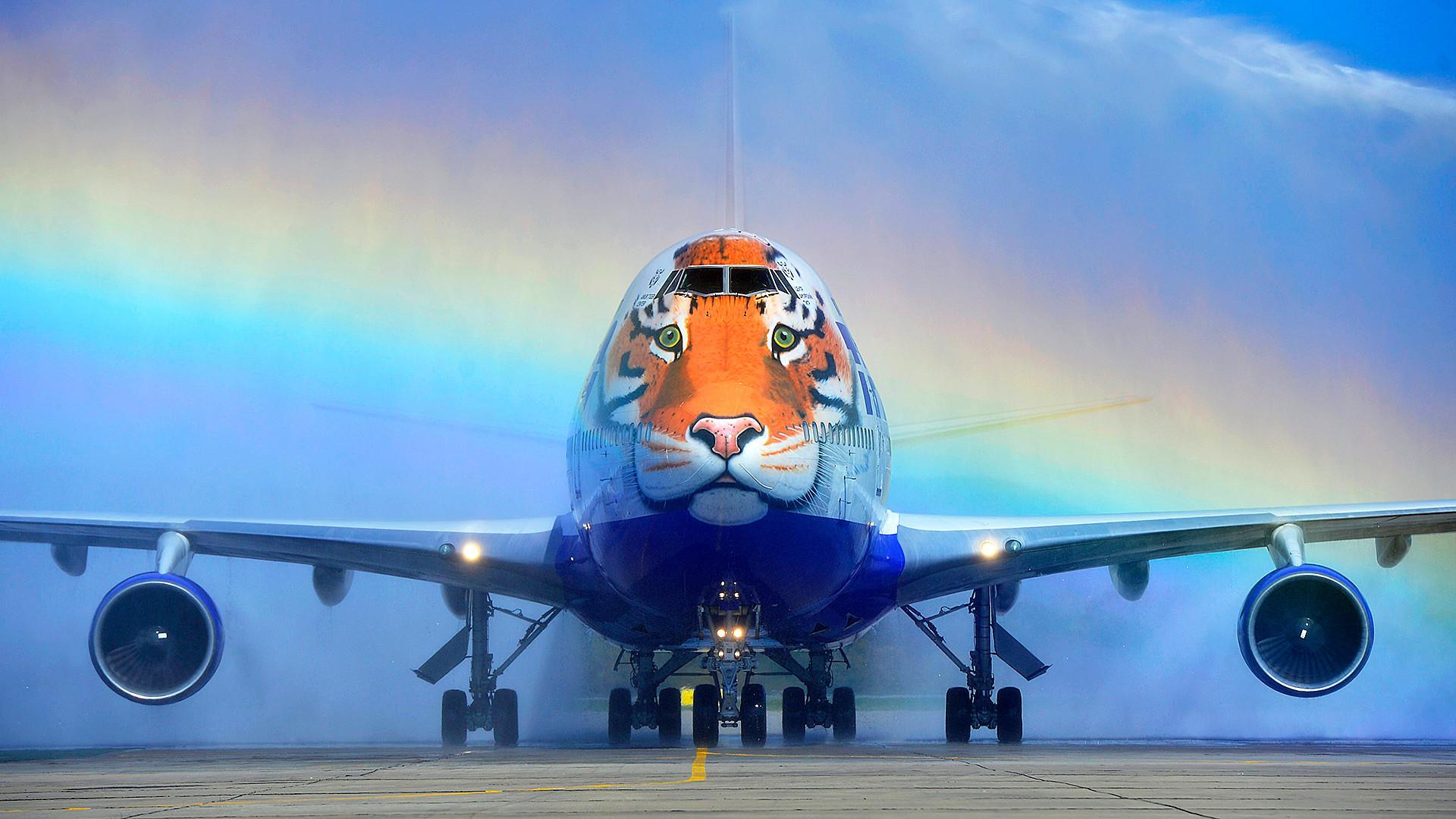 """""""虎""""飛行機は""""ストライプ・フライト""""として知られた。"""