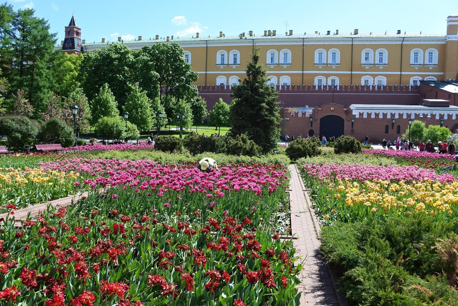 Aleksandrovski vrt ob Kremlju