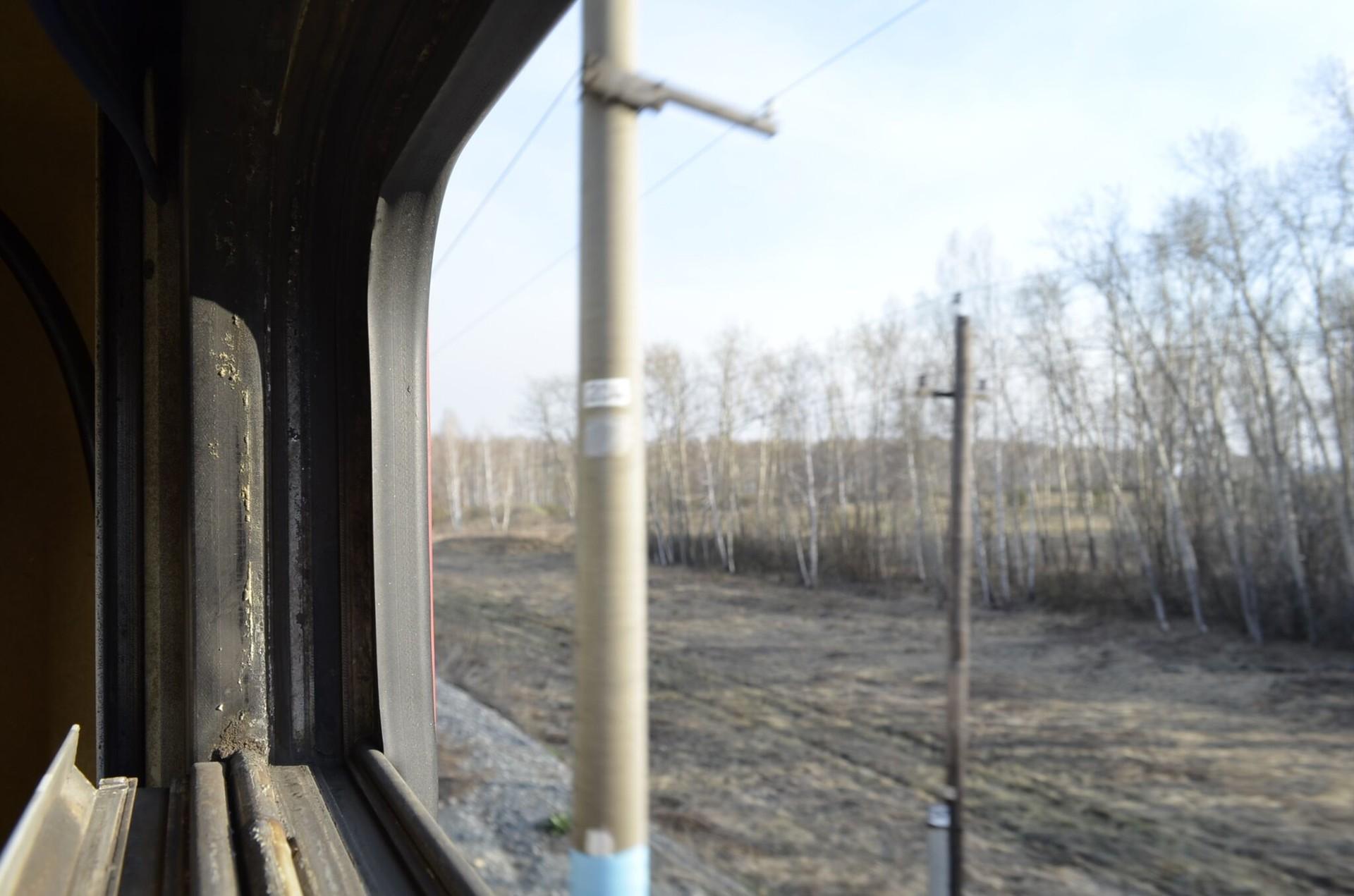 Kereta melaju dan dunia berlalu .... Semakin ke timur Anda pergi, semakin tinggi pohon-pohon birch menghadang pemandangan.