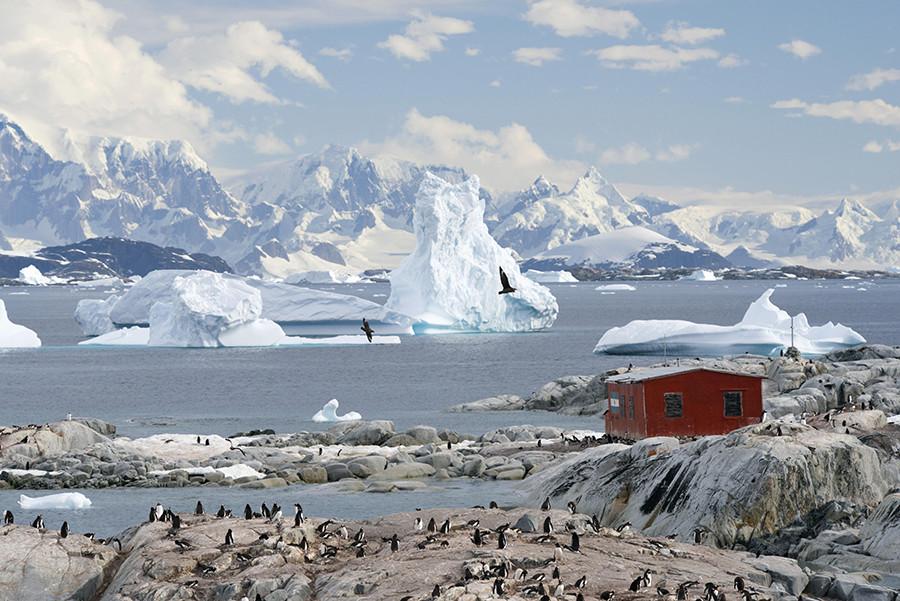 Imagen la Antártida.