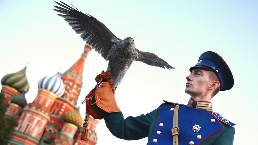 Un miembro del servicio de ornitología del Kremlin en la ceremonia de clausura del Festival Internacional de Música Militar de la Torre Spasskaia en la Plaza Roja.