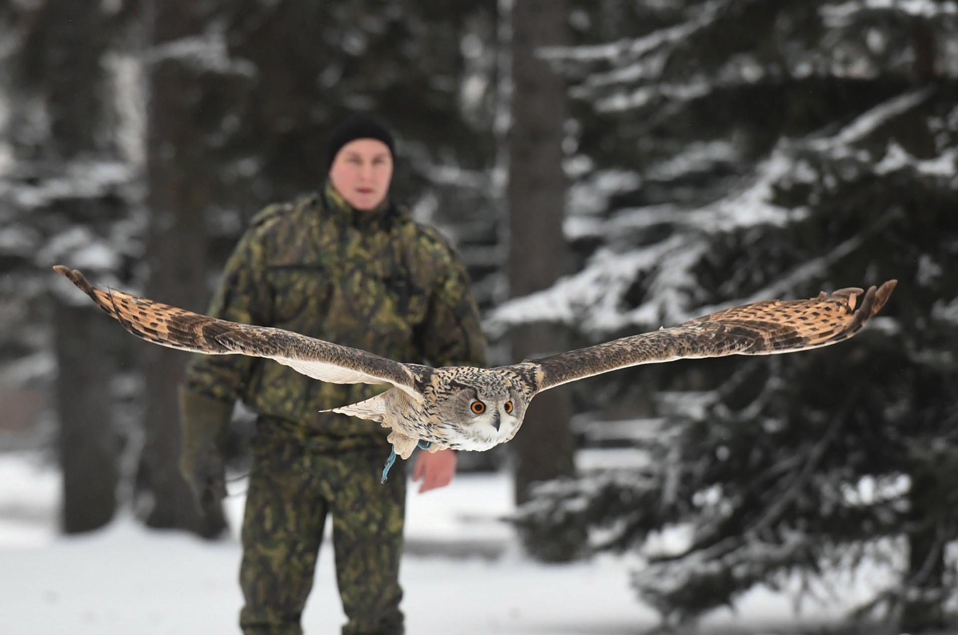 Un militar de la Oficina del Comandante del Kremlin de Moscú, con un búho real.