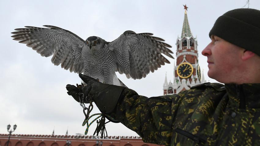 Esos halcones protegen el Kremlin de Moscú.