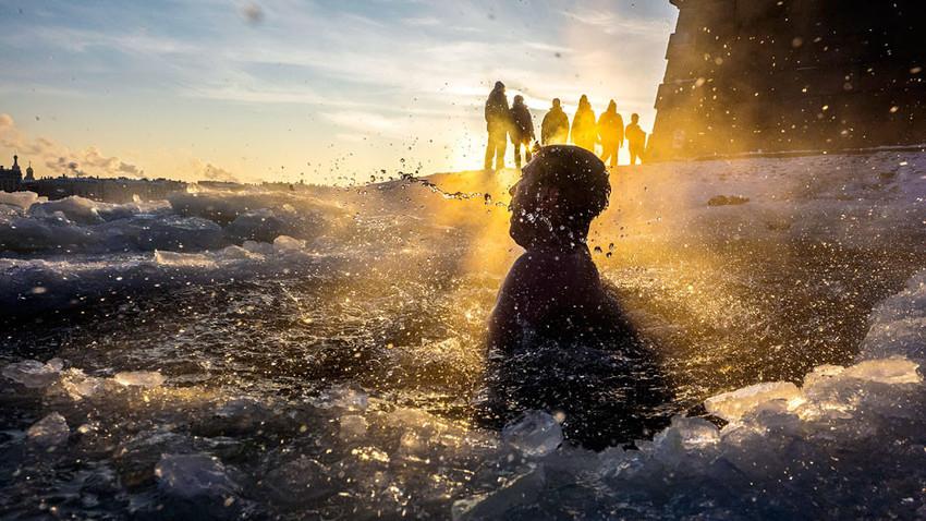 """Ein Eisschwimmer taucht aus einem Eisloch im geforenen Fluss Newa neben der Peter-und-Paul-Festung in Sankt Petersburg auf. Die Eisschwimmer werden in Russland """"Walross"""" (Russisch """"Morsch"""") genannt."""