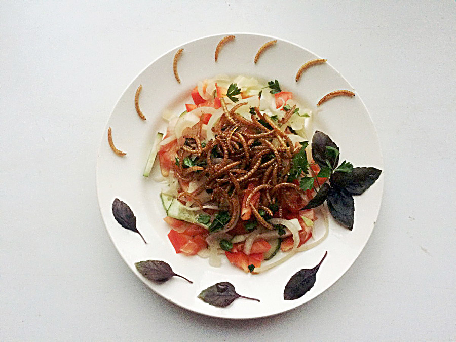 Salad with mealworm