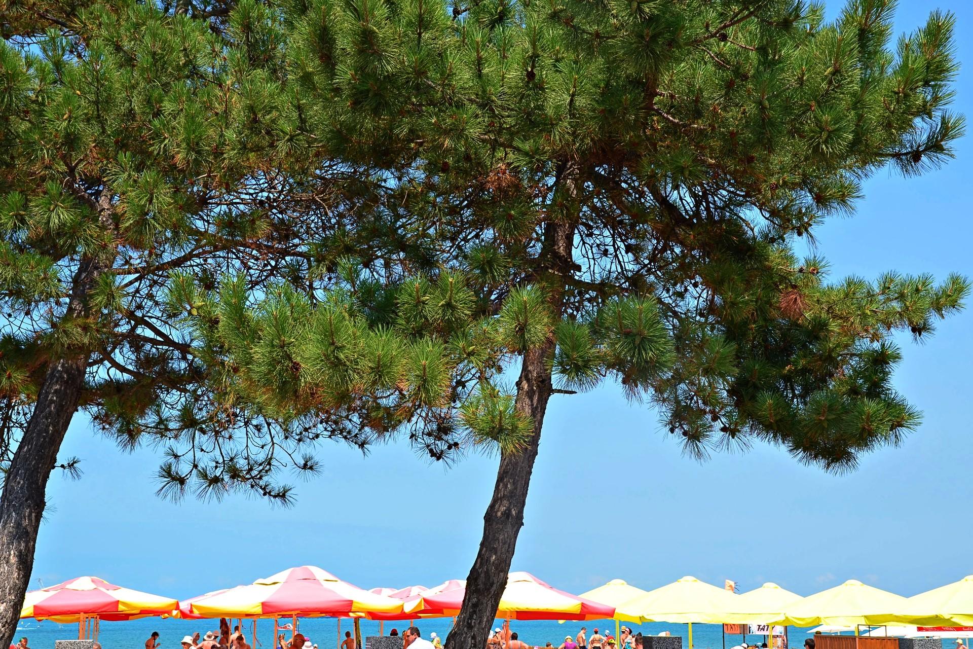 Unter den Sonnenschirmen am Strand wird gegrillter Mais, Limo und Bier verkauft.