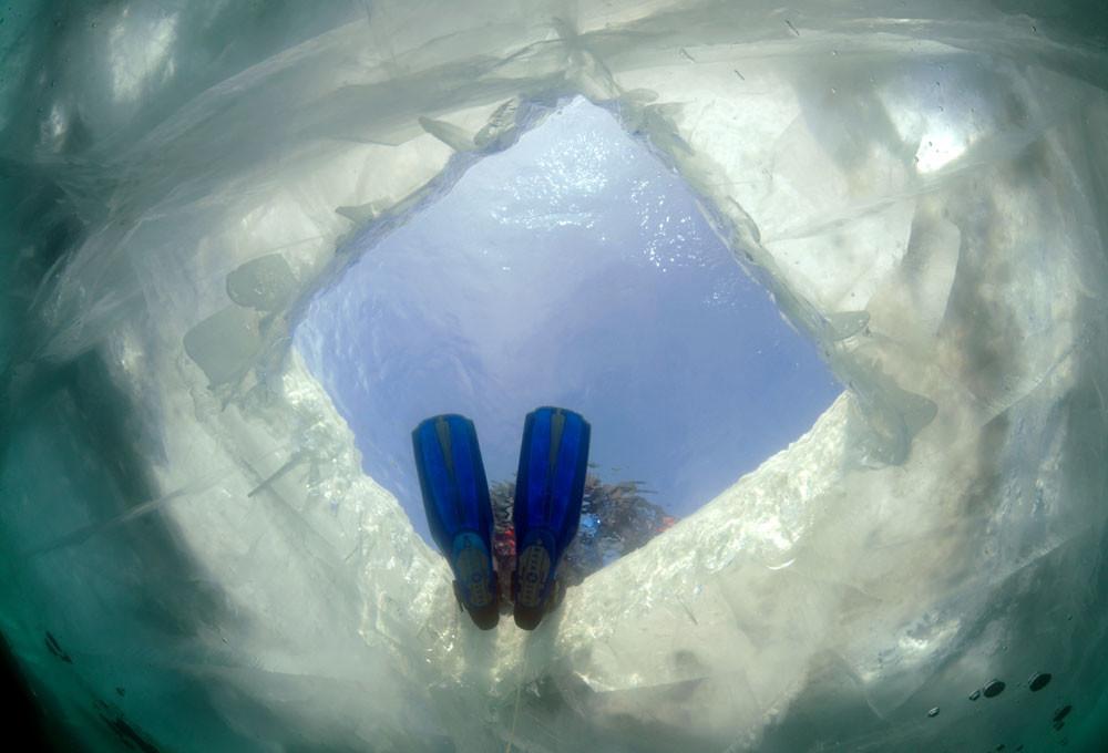 Некрасов ги има истражено повеќето подводни дестинации, но инсистира на тоа дека Бајкалот има нешто што други места го немаат.